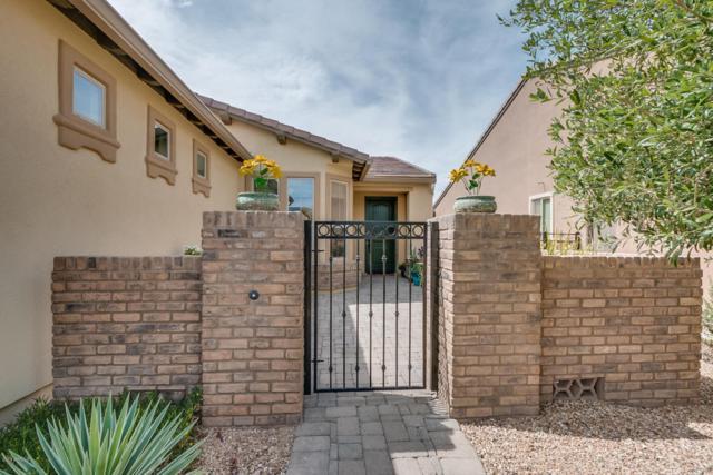 1353 E Verde Boulevard, San Tan Valley, AZ 85140 (MLS #5763090) :: Yost Realty Group at RE/MAX Casa Grande