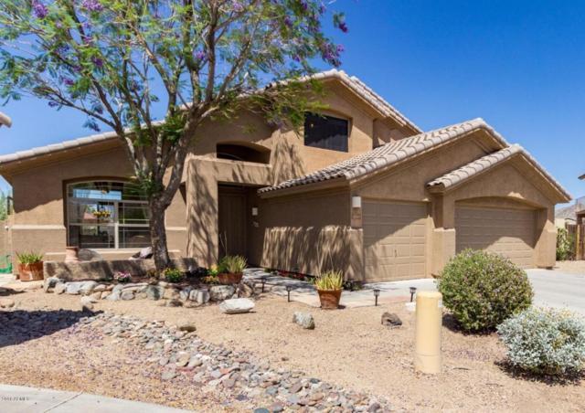 11263 S Oakwood Drive, Goodyear, AZ 85338 (MLS #5763449) :: Lifestyle Partners Team