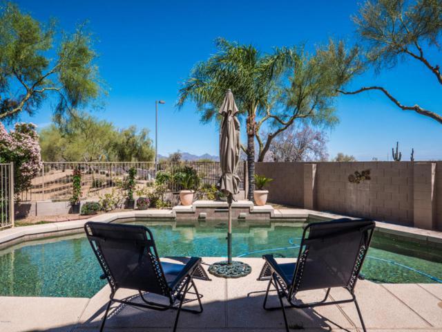 25803 N 44TH Way, Phoenix, AZ 85050 (MLS #5763810) :: Cambridge Properties