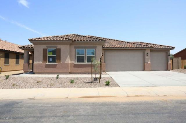 20503 N Madeline Street, Maricopa, AZ 85138 (MLS #5764070) :: The Everest Team at My Home Group