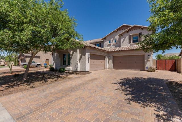 866 E Lowell Avenue, Gilbert, AZ 85295 (MLS #5764175) :: Essential Properties, Inc.