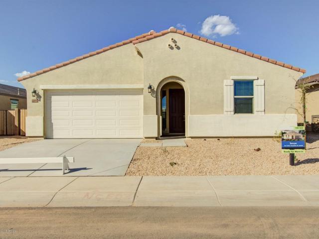 40174 W Brandt Drive, Maricopa, AZ 85138 (MLS #5764270) :: The Garcia Group
