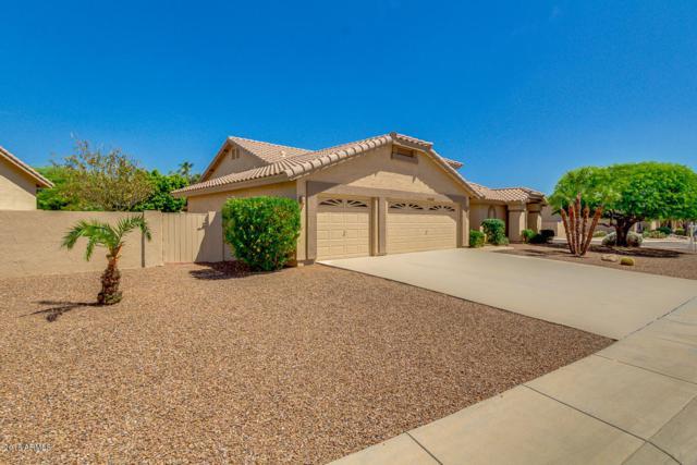 19105 N 85TH Lane, Peoria, AZ 85382 (MLS #5764339) :: Desert Home Premier