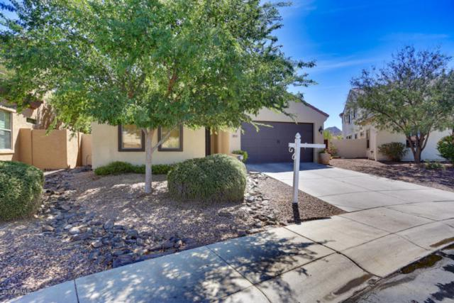 29557 N 69TH Avenue, Peoria, AZ 85383 (MLS #5764431) :: Kortright Group - West USA Realty