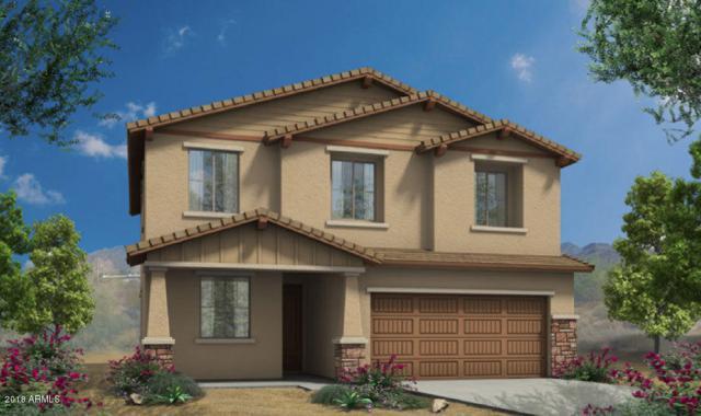 12258 W Desert Sun Lane, Peoria, AZ 85383 (MLS #5764448) :: Essential Properties, Inc.