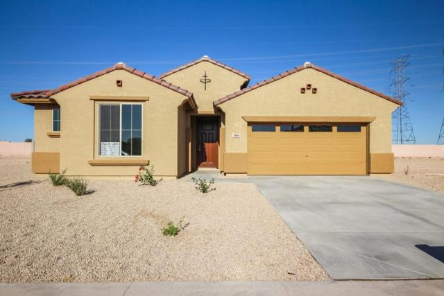 2905 S 121ST Drive, Tolleson, AZ 85353 (MLS #5764682) :: My Home Group