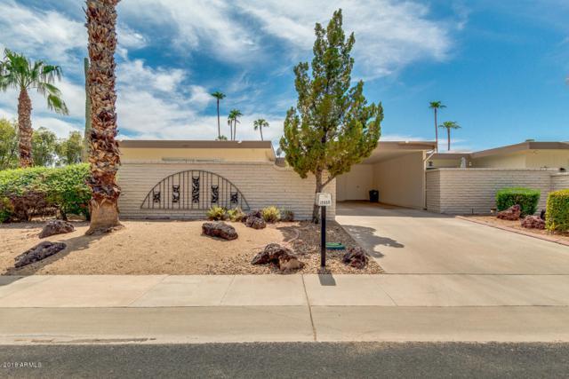 17450 N 106TH Avenue, Sun City, AZ 85373 (MLS #5765107) :: Team Wilson Real Estate