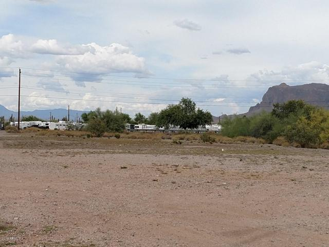 445 E Old West Highway, Apache Junction, AZ 85119 (MLS #5766228) :: Team Wilson Real Estate