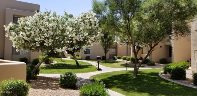 11333 N 92 Street #2034, Scottsdale, AZ 85260 (MLS #5766733) :: Essential Properties, Inc.
