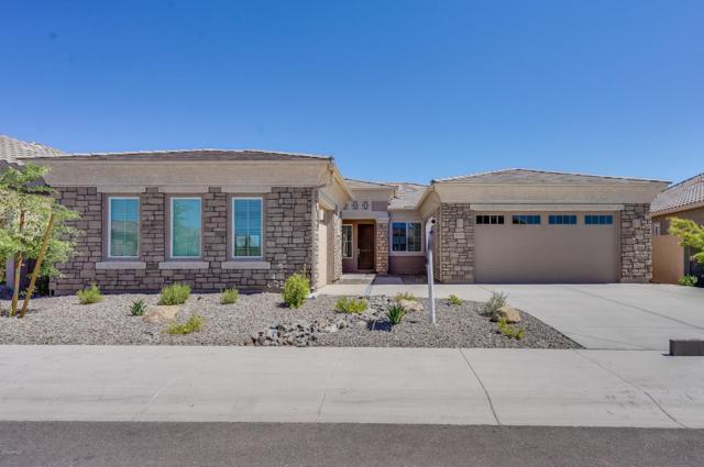 25193 N 103RD Drive, Peoria, AZ 85383 (MLS #5767548) :: The Wehner Group