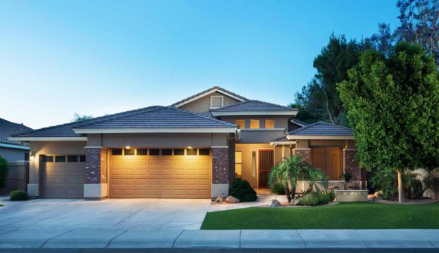 218 W Vinedo Lane, Tempe, AZ 85284 (MLS #5767689) :: Lifestyle Partners Team