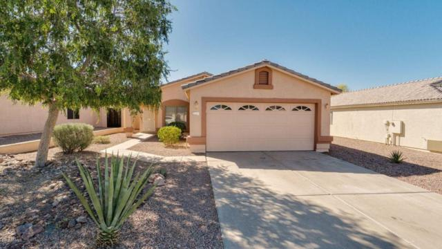 6823 S Crimson Sky Place, Gold Canyon, AZ 85118 (MLS #5767997) :: The Everest Team at My Home Group