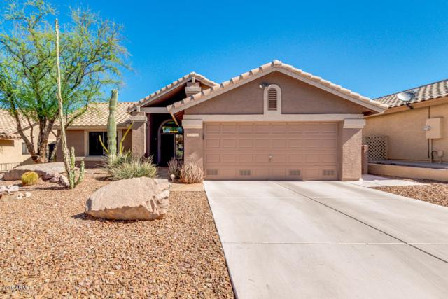 8392 E Golden Cholla Drive, Gold Canyon, AZ 85118 (MLS #5768008) :: The Pete Dijkstra Team