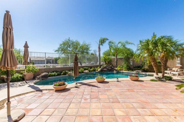 23834 N 66TH Avenue, Glendale, AZ 85310 (MLS #5768645) :: My Home Group