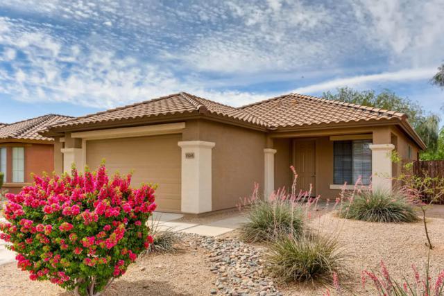 15261 W Custer Lane, Surprise, AZ 85379 (MLS #5768674) :: Essential Properties, Inc.