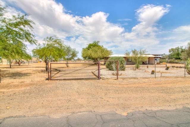 50522 W Esch Trail, Maricopa, AZ 85139 (MLS #5768865) :: Yost Realty Group at RE/MAX Casa Grande
