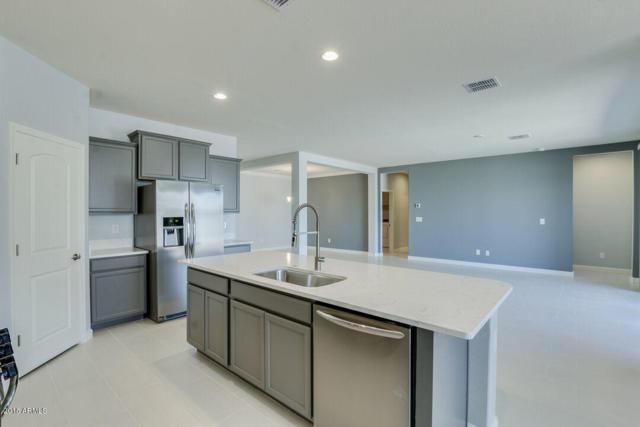 576 W Danish Red Trail, San Tan Valley, AZ 85143 (MLS #5768876) :: Yost Realty Group at RE/MAX Casa Grande