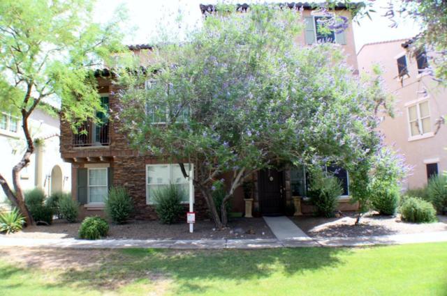 28922 N 124TH Lane, Peoria, AZ 85383 (MLS #5769136) :: The Laughton Team