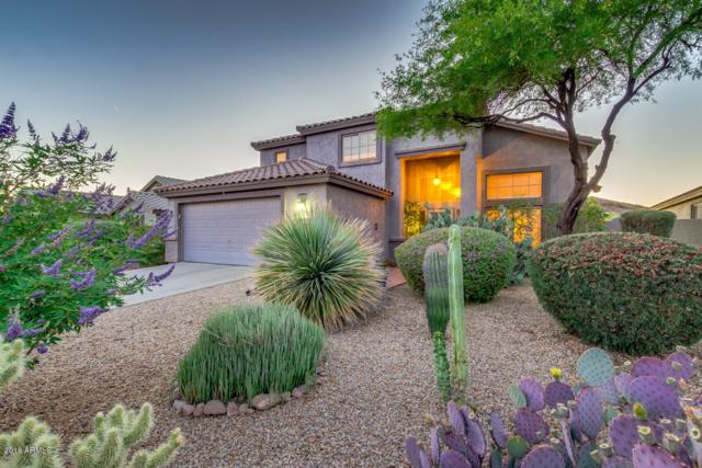 6708 E Hacienda La Noria Lane, Gold Canyon, AZ 85118 (MLS #5769208) :: The Pete Dijkstra Team
