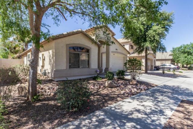 16223 W Moreland Street, Goodyear, AZ 85338 (MLS #5769825) :: Five Doors Network