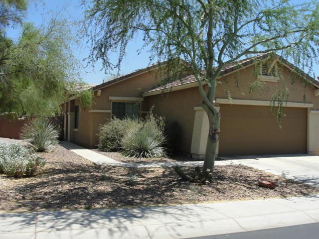1867 W Morse Drive, Anthem, AZ 85086 (MLS #5769965) :: The W Group