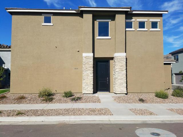 1814 W Pollack Street, Phoenix, AZ 85041 (MLS #5770039) :: The Jesse Herfel Real Estate Group