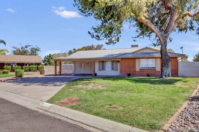 4302 W Sandra Circle, Glendale, AZ 85308 (MLS #5770202) :: Team Wilson Real Estate