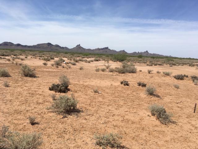 11887 W Aries Drive, Eloy, AZ 85131 (MLS #5770797) :: Yost Realty Group at RE/MAX Casa Grande