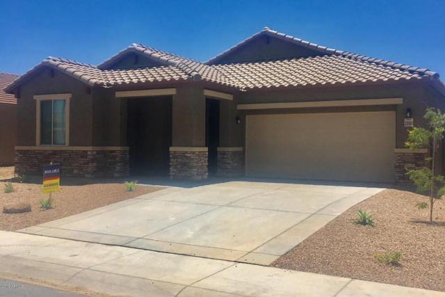 23763 W Cocopah Street, Buckeye, AZ 85326 (MLS #5770817) :: Five Doors Network