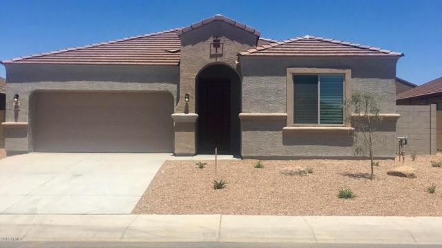 23770 W Cocopah Street, Buckeye, AZ 85326 (MLS #5770837) :: Five Doors Network
