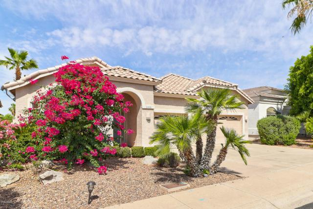 21420 N 56TH Avenue, Glendale, AZ 85308 (MLS #5771567) :: Desert Home Premier