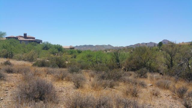 39400 N Ridgeway Drive, Cave Creek, AZ 85331 (MLS #5772348) :: Brett Tanner Home Selling Team