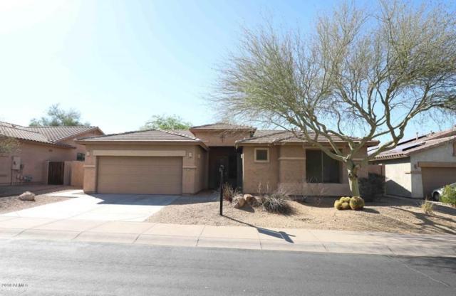 18458 W Capistrano Avenue, Goodyear, AZ 85338 (MLS #5772374) :: Occasio Realty