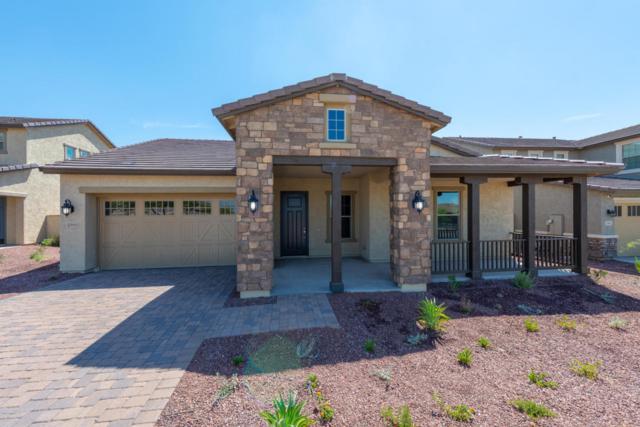 2393 N Beverly Place, Buckeye, AZ 85396 (MLS #5772494) :: Lux Home Group at  Keller Williams Realty Phoenix