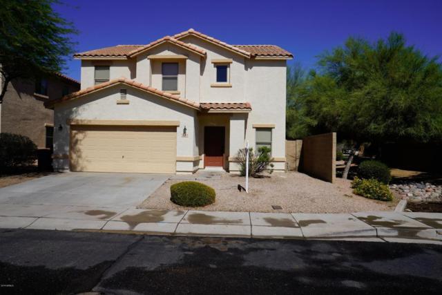 2953 S Mandy Circle, Mesa, AZ 85212 (MLS #5772744) :: The Everest Team at My Home Group