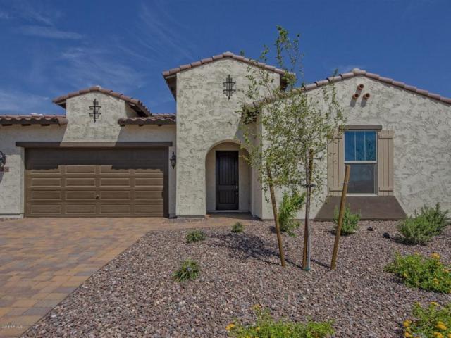 18434 W Meadowbrook Avenue, Goodyear, AZ 85395 (MLS #5773047) :: Occasio Realty