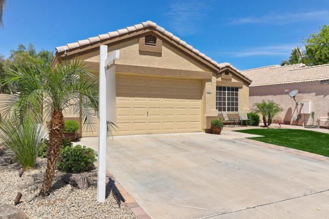 122 S Jackson Street, Chandler, AZ 85225 (MLS #5773121) :: The Everest Team at My Home Group