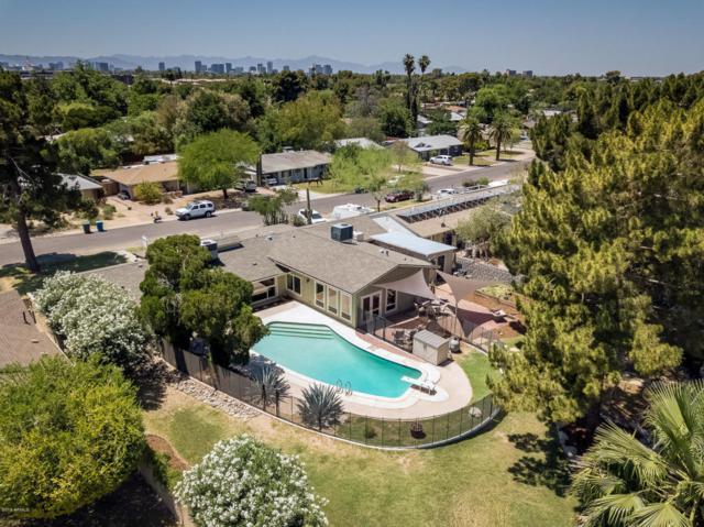 1702 E Palo Verde Drive, Phoenix, AZ 85016 (MLS #5773269) :: Essential Properties, Inc.