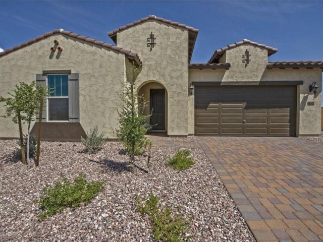 18492 W College Drive, Goodyear, AZ 85395 (MLS #5773441) :: Occasio Realty