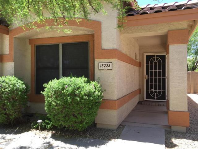 18228 N 8TH Street, Phoenix, AZ 85022 (MLS #5774256) :: Essential Properties, Inc.