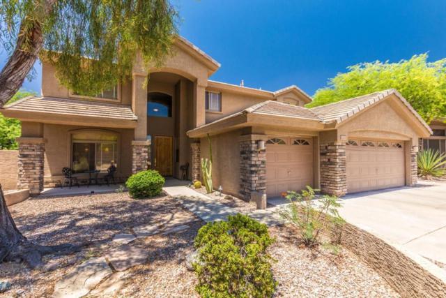 33206 N 61ST Street, Scottsdale, AZ 85266 (MLS #5774259) :: Occasio Realty