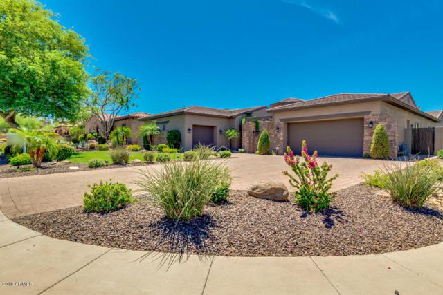 9821 E Davenport Drive, Scottsdale, AZ 85260 (MLS #5774872) :: The W Group