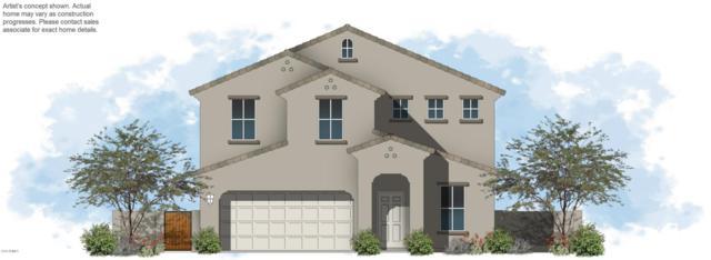 1740 E Desert Breeze Place, Casa Grande, AZ 85122 (MLS #5775159) :: The Everest Team at My Home Group