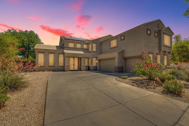 16560 W Baden Avenue, Goodyear, AZ 85338 (MLS #5775279) :: My Home Group