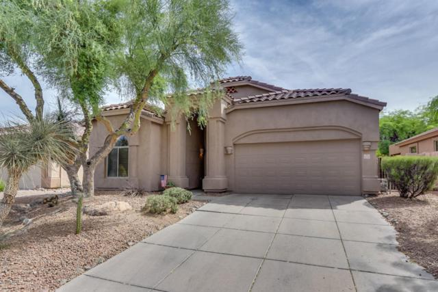 3055 N Red Mountain Road #175, Mesa, AZ 85207 (MLS #5775718) :: The Everest Team at My Home Group