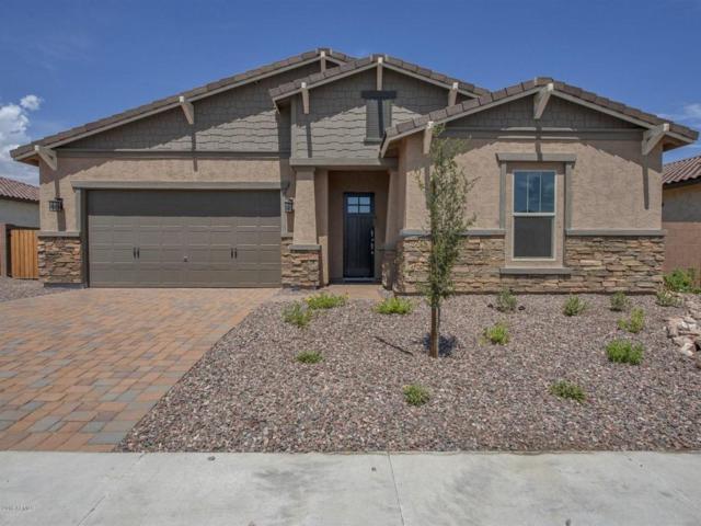 18596 W College Drive, Goodyear, AZ 85395 (MLS #5775744) :: Occasio Realty
