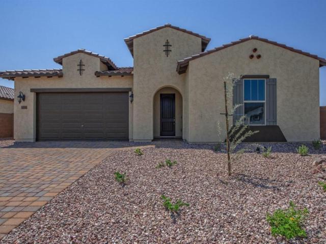 4866 N 185TH Drive, Goodyear, AZ 85395 (MLS #5775757) :: Occasio Realty