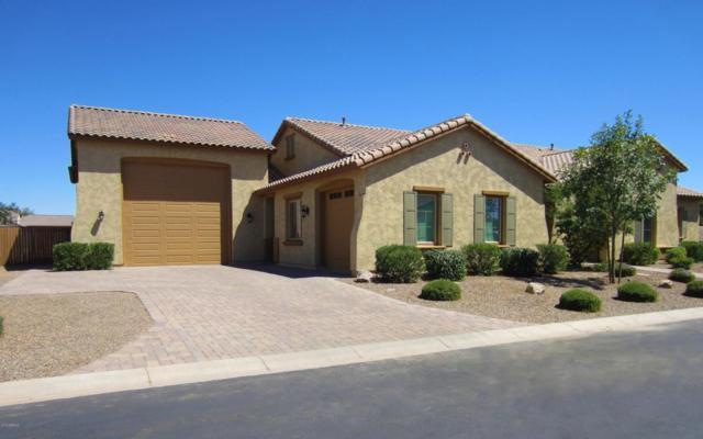 21913 E Aspen Valley Drive, Queen Creek, AZ 85142 (MLS #5776030) :: The Wehner Group