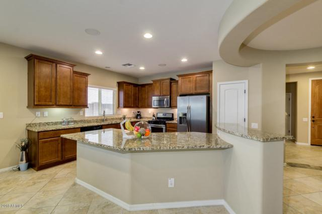 3608 E Abraham Lane, Phoenix, AZ 85050 (MLS #5776233) :: Lux Home Group at  Keller Williams Realty Phoenix
