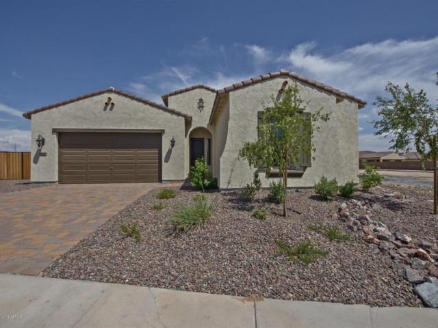 4915 N 185TH Lane, Goodyear, AZ 85395 (MLS #5776296) :: The W Group